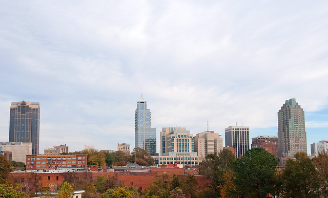 North Raleigh Skyline