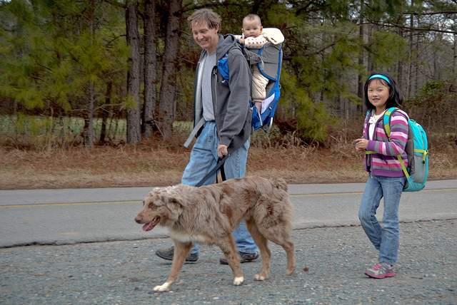 Wake County NC Dog Walking Parks