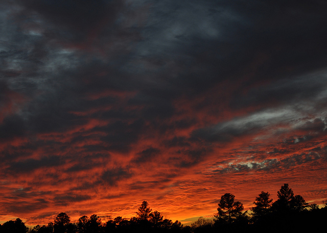 Brier Creek Raleigh, NC Beautiful Sunset and color of sky