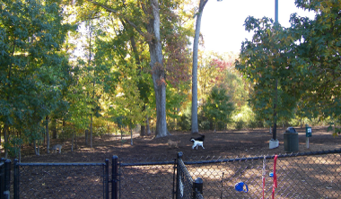 Godbold Cary NC Dog Park with pets playing